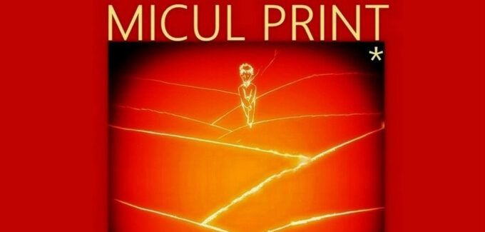 Micul prinț – ed. XXVI @ Satu Mare